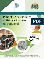 Plan de Acción Iica