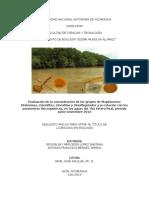 TESIS FINAL EVALUACION FITOPLANCTONICA.pdf