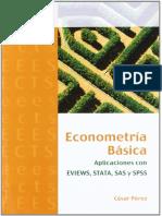 Econometria Basica