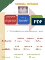 incisivocentralsuperior-140806225637-phpapp01.pptx