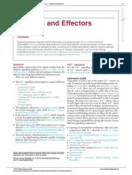 004 Sensors and Effectors