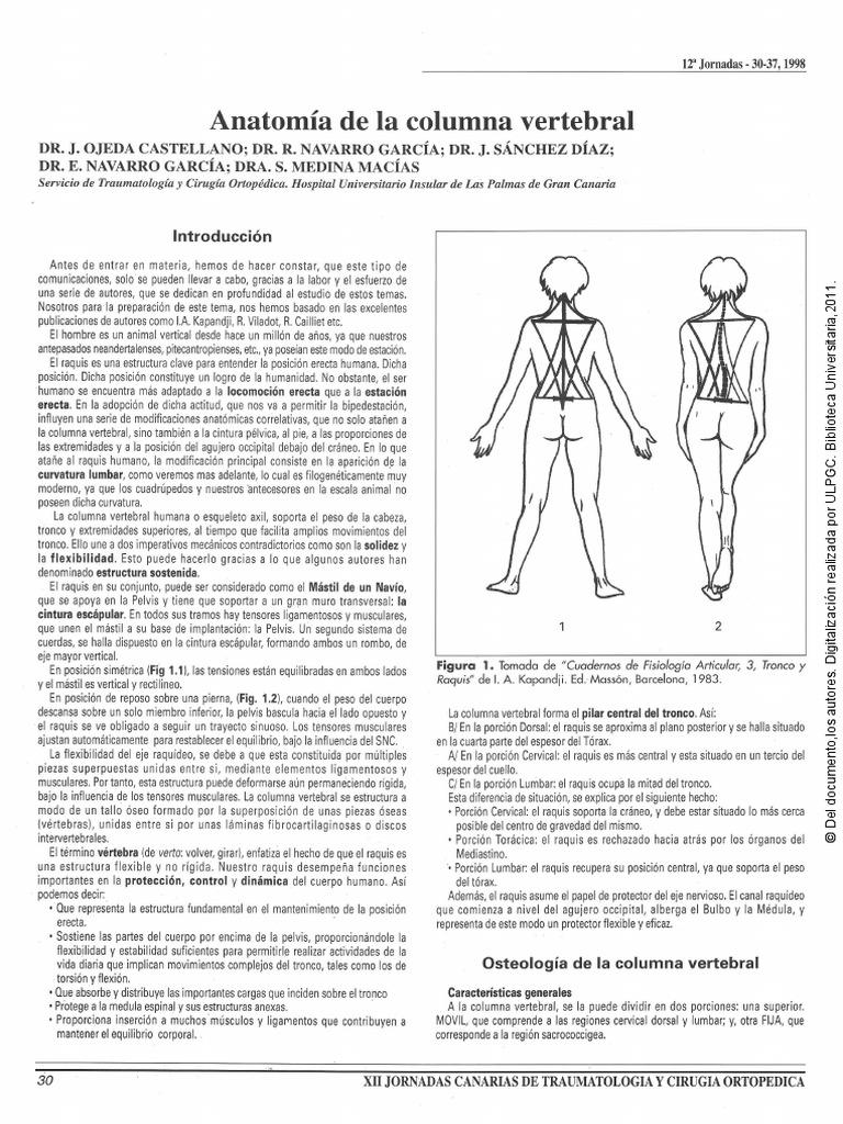 Anatomía de la columna vertebral.pdf