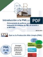 La PML y la Norma 61002.pdf