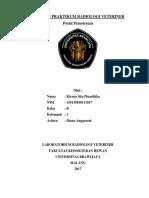 cover lap. radiologi .docx