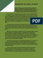 Historia de La Agroindustria Del Mezcal en México