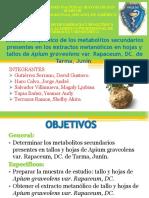 Orga Proyect Est Fit metab Apium Graveolens.pdf