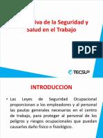 Normativa e seguridad y salud en el trabajo.pdf