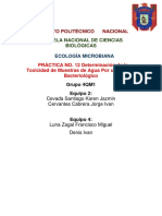 reporte-trini-falta-tabla.docx