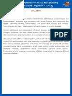 VLD411-syllabus