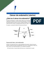 Cancer de Endometrio. American Cancer Society