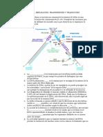 Taller de Genetica. Replicación, Transcripción y Traducción