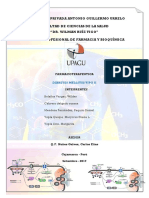 Diabetes Mellitus Tipo II PDF