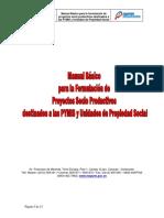 Manual_Proyectos_INAPYMI.pdf
