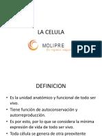 12)LA CELULA..pdf