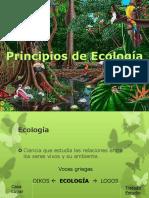 3. Aspectos Conceptuales Básicos en la Evaluación de Impactos.pptx