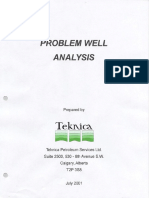Teknica - Problem Well Analysis 2001