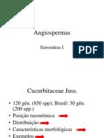 Aula 4 -Eudicotiledôneas Asterídeas