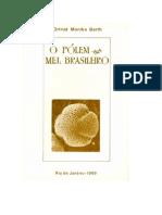 2009 Livro O Pólen no Mel Brasileiro reduzido