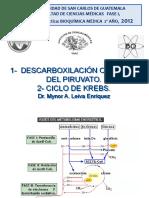 CICLO DE KREBS (DESCARBOXILACIÓN DE PIRUVATO)