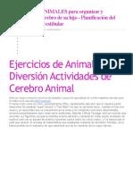 Ejercicios Animales Para Organizar y