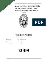98777737-Turbina-Pelton.doc