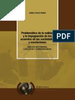 10.- Problemática de La Nulidad y La Impugnación de Los Acuerdos de Las Sociedades y Asociaciones.
