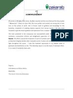 329251414 Pak Arab Fertilizers Financial Analysis