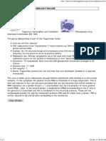 Alphaviridae.pdf
