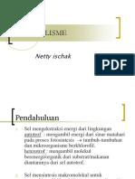 metabolisme ppt