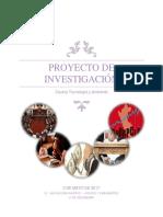 Modelo de Proyecto de Investigación PDF