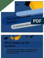 The Cardiovascular System!03