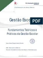 Fundamentos Teoricos e Praticos Da Gestao Escolar Versao Final