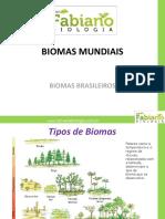 Biomas Fabiano