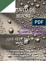 PUNTO DE ROCIO.pptx