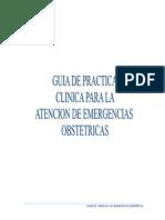 GUIA-DPTO-GINOBST-14 hospital maria auxiliador.pdf