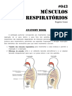 346507079-043-Musculos-Da-Respiracao-2.pdf