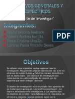 Objetivosgeneralesyespecificoslorenainvestigacion 120901112500 Phpapp01 (1)