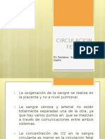 CIRCULACION FETAL.pptx