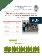 Depuración de Contaminantes de Los Relaves Antiguos Mediante Biofiltros y Cactaceas (1)