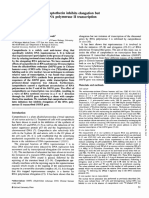 The Anti-cancer Drug Camptothecin Inhibits Elongation but Stimulates Initiation of RNA Polymerase II Transcription