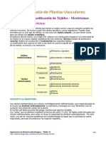 botanica histologia.pdf