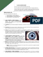 94358263 Guia de Clase No 008 Morfologia y Fisiologia Del Ojo