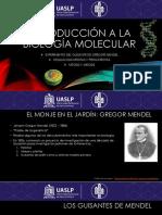 Introducción a La Biología Molecular