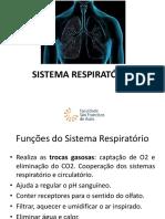 Sistema Respiratório.pdf