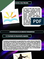 B.derechos Fundamentales SCRIBD