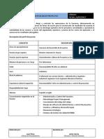 Perfil-Gestor-de-Proyectos-N.docx