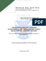 Saldivia P., Juan C._proyecto_chile.pdf
