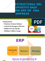 Diseño Estructural Del Presupuesto Bajo Esquema Erp de (3) (1)
