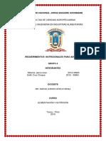 ALIMENTACION DEL ADULTO.docx