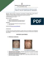 Guía taller Semiología de abdomen